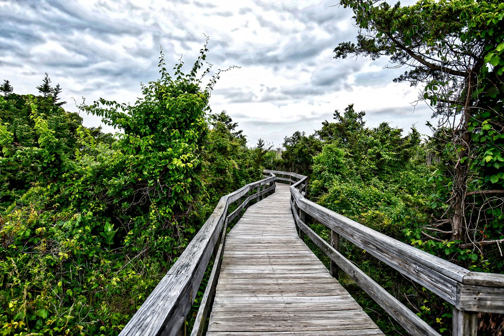 Fire Island Lighthouse walkway
