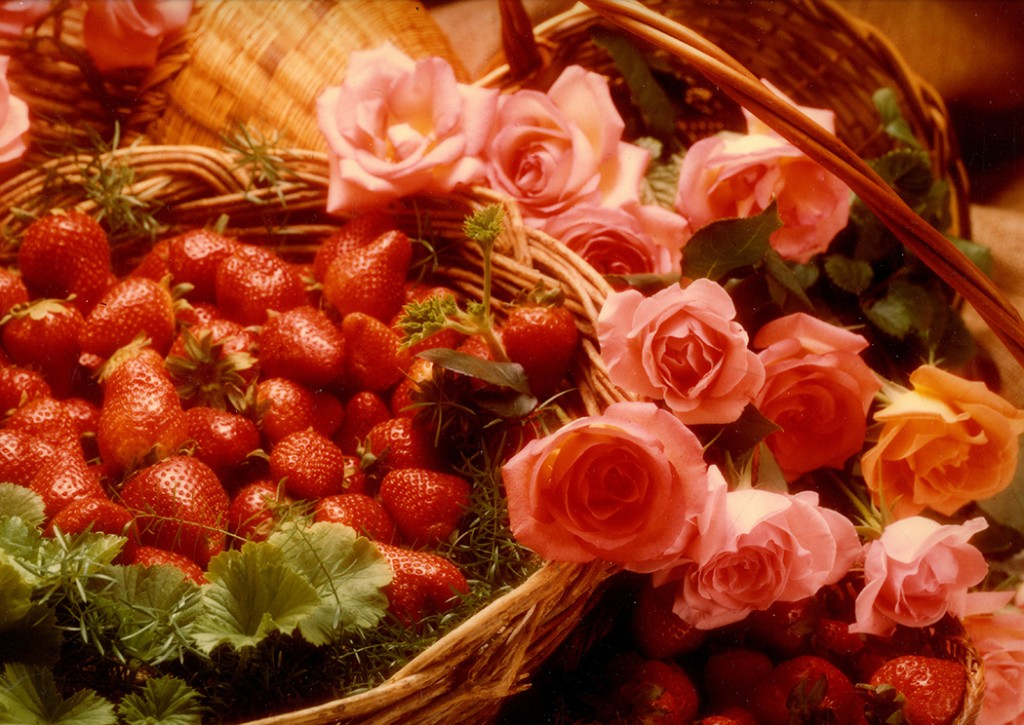 Strawberries and Pink Roses