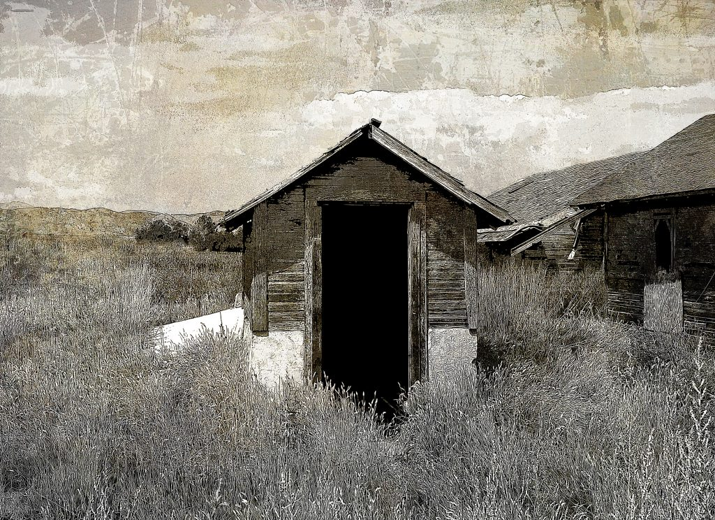 Shed, Wellington, Co.
