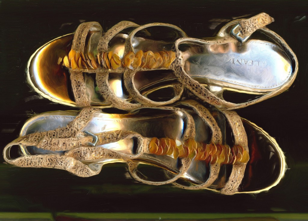 Golden Espadrilles (scan)